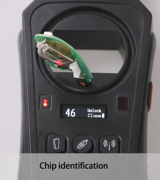 46chip identification